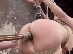 Verecund dutiful fingered added to pussytoyed